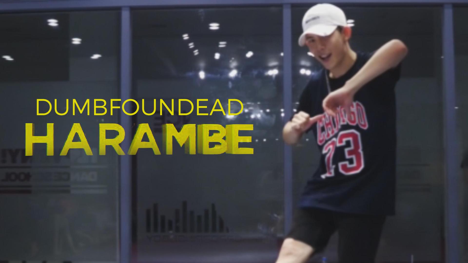 Dumbfoundead – Harambe (choreography_ZACKO)