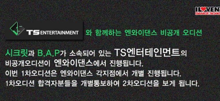 [비공개 오디션]TS Entertainment